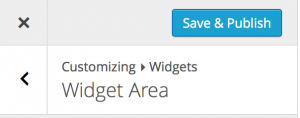 Customizing WIdgets Save & Publish